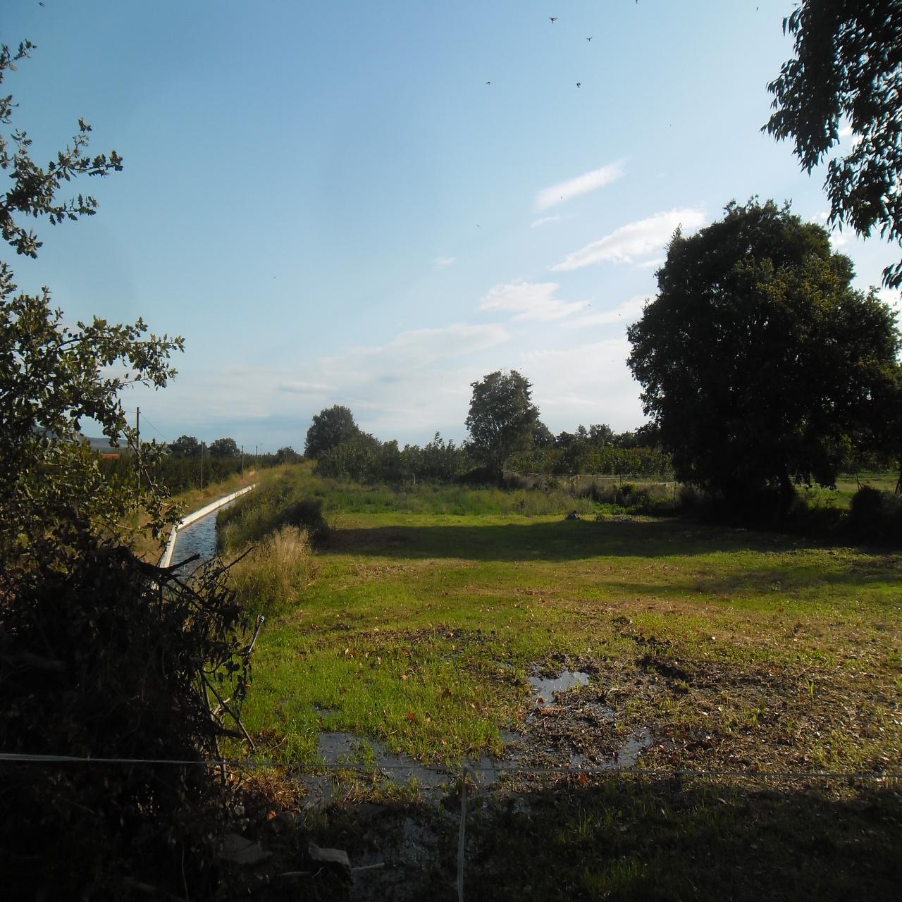 Image_4, Terrain, Ille-sur-Têt, ref :3462