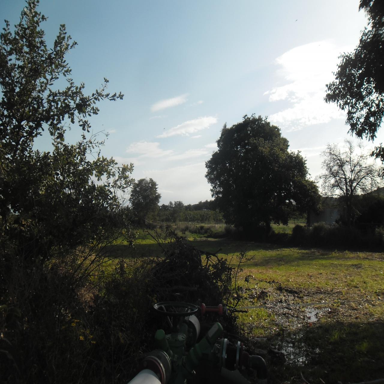Image_3, Terrain, Ille-sur-Têt, ref :3462
