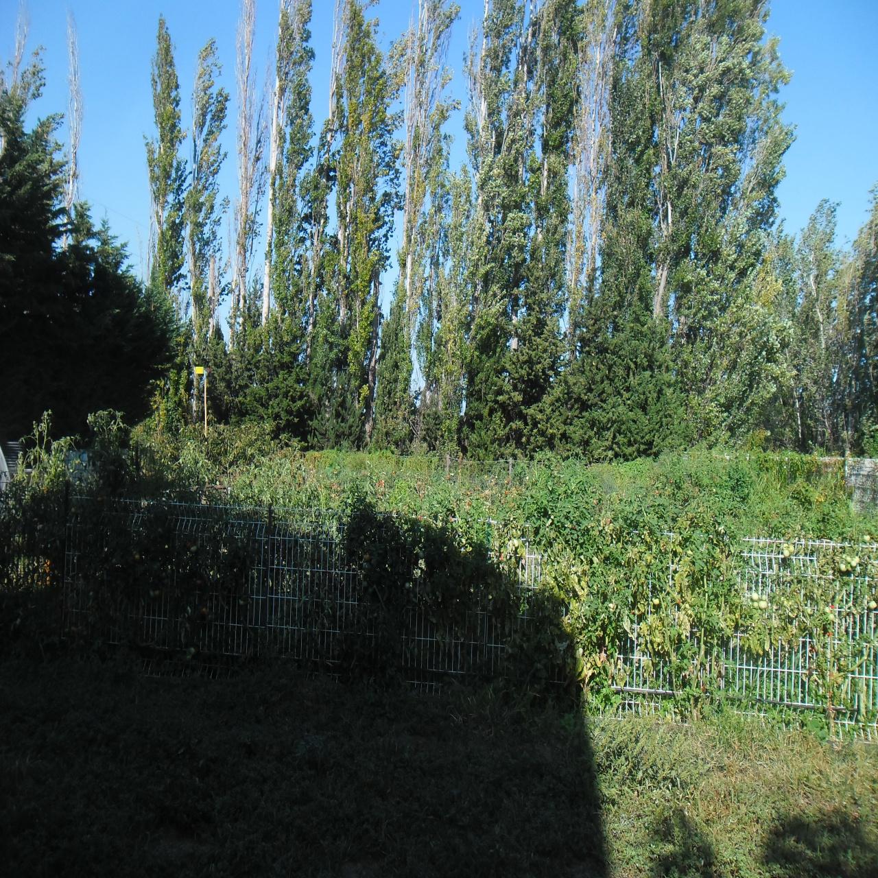 Image_5, Mas, Ille-sur-Têt, ref :3377