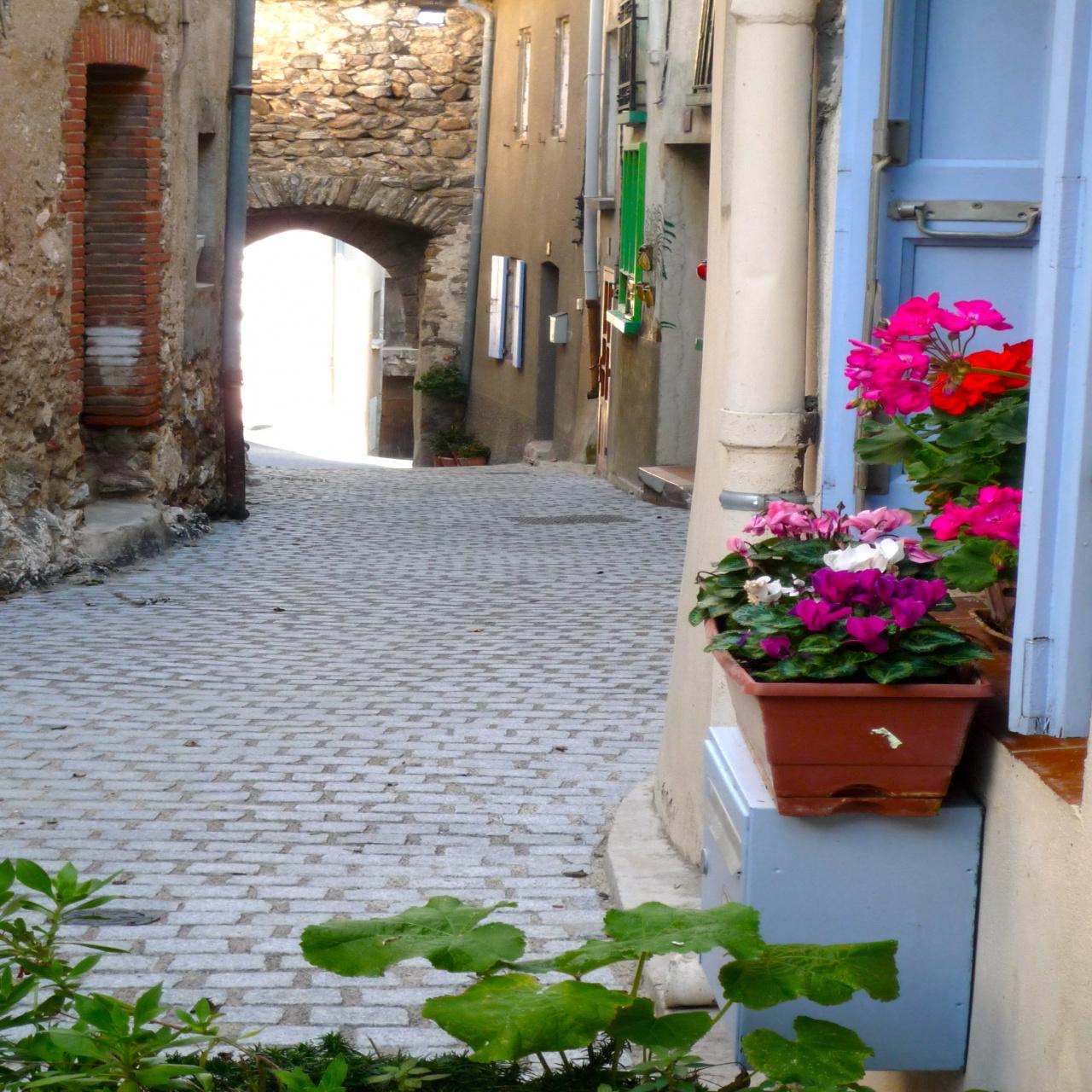 Image_7, Maison de village, Ille-sur-Têt, ref :3359