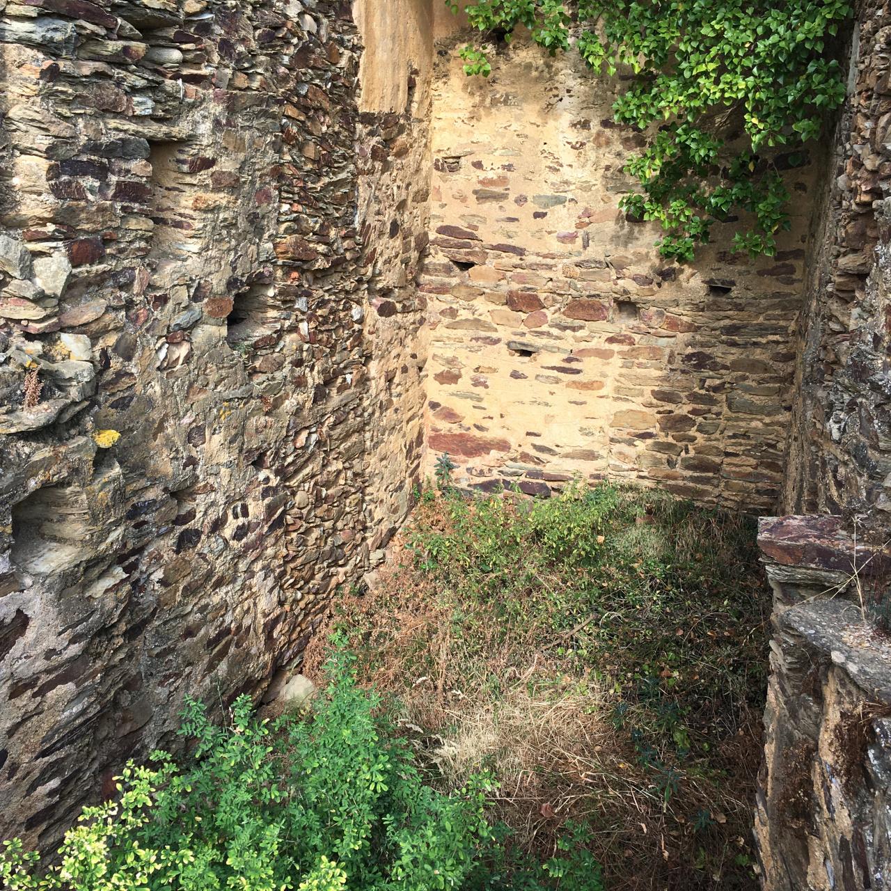 Image_7, Mas, Saint-Michel-de-Llotes, ref :3538