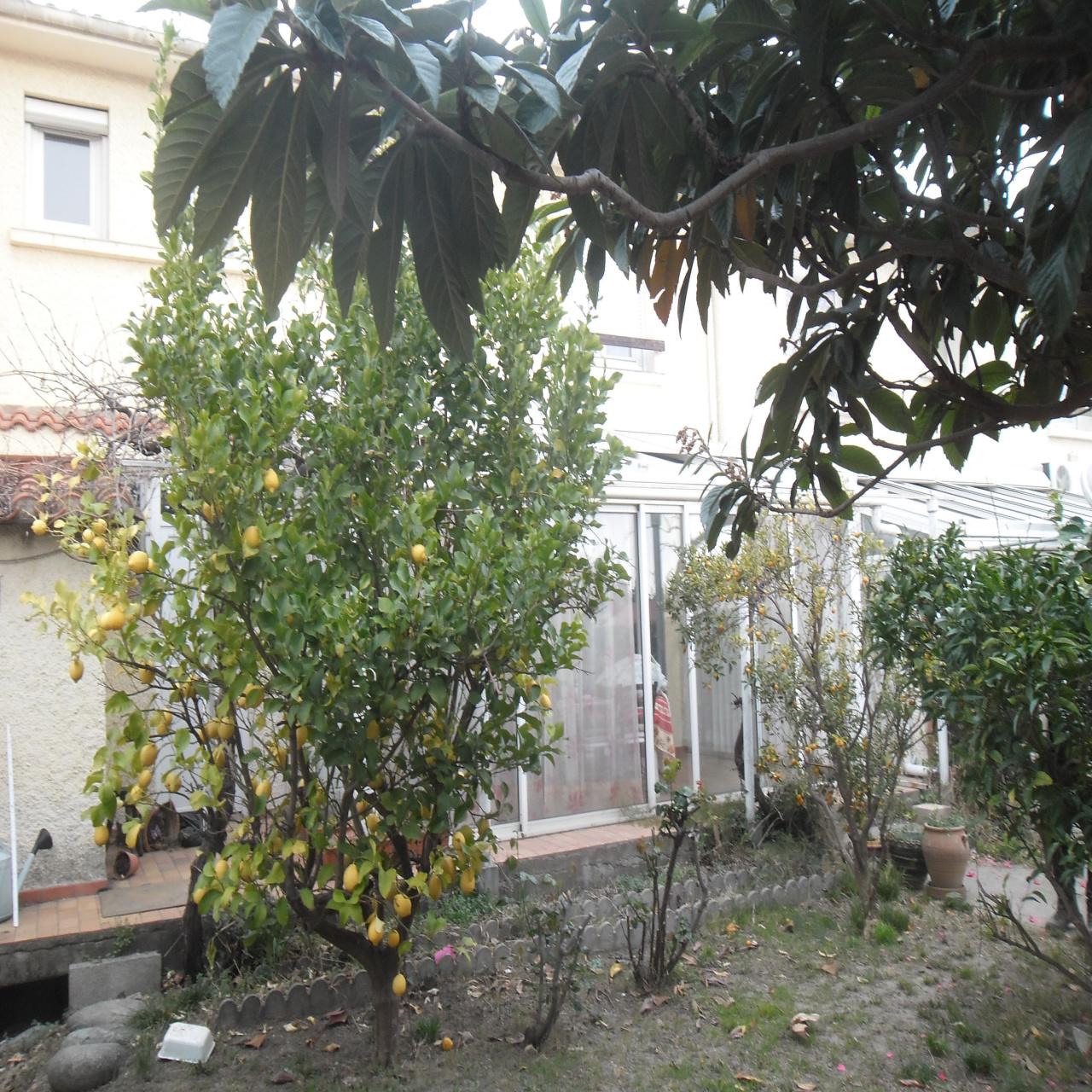 Image_1, Villa, Ille-sur-Têt, ref :3398